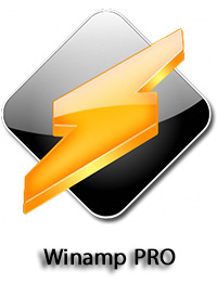 http://images2.p30world.com/hamed/July-2013/Dlbazar/Winamp-PRO_E.jpg